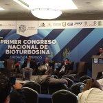 Biocombustibles para la sustentabilidad energética